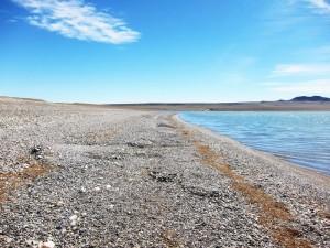 Старые выползы на южном берегу Хяргас Нуура