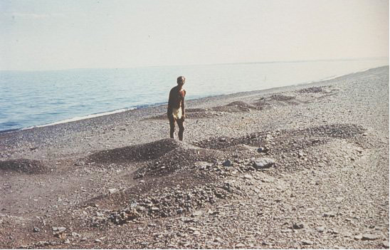 Следы выполза, обнаруженные В.В.Ярмолюком и В.И.Николаевым в 1985, 1987, 1989 и 1990 годах в рамках Советско-Монгольской геологической экспедиции.
