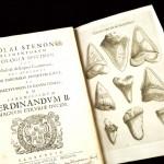 Steno-1667-32